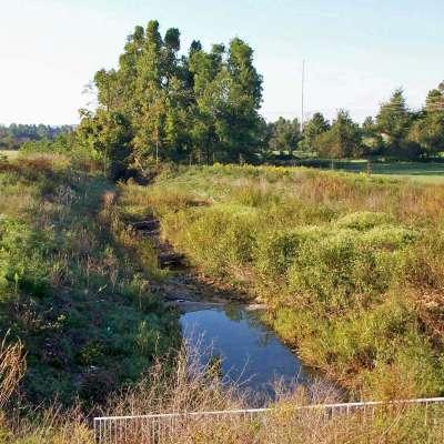 Southern Corridor Environmental Services
